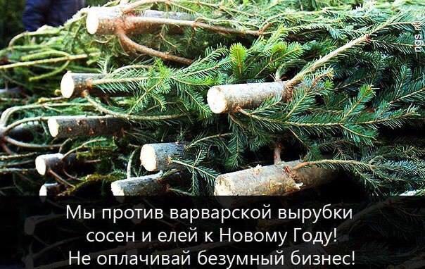 Русские праздники - поздравления