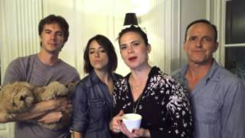Agents of SHIELD Agent Carter Dubsmash COMPLETE COMPILATION