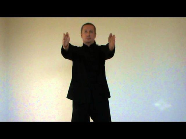 цикл даосских упражнений - часть 1. Проводит доктор Дворянчиков А.Ю.