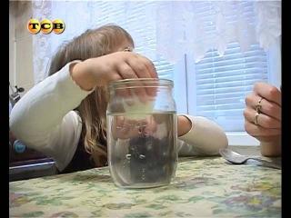 Чем занять ребенка на кухне. Мамина школа. ТСВ