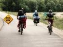 Какие бывают велобаулы для багажника