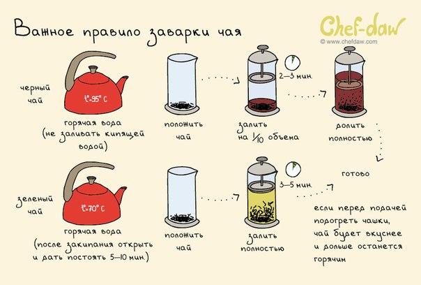 Важное правило заварки чая