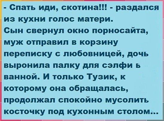 Расследование дела о создании Януковичем преступной организации приостановлено, - адвокат - Цензор.НЕТ 7059