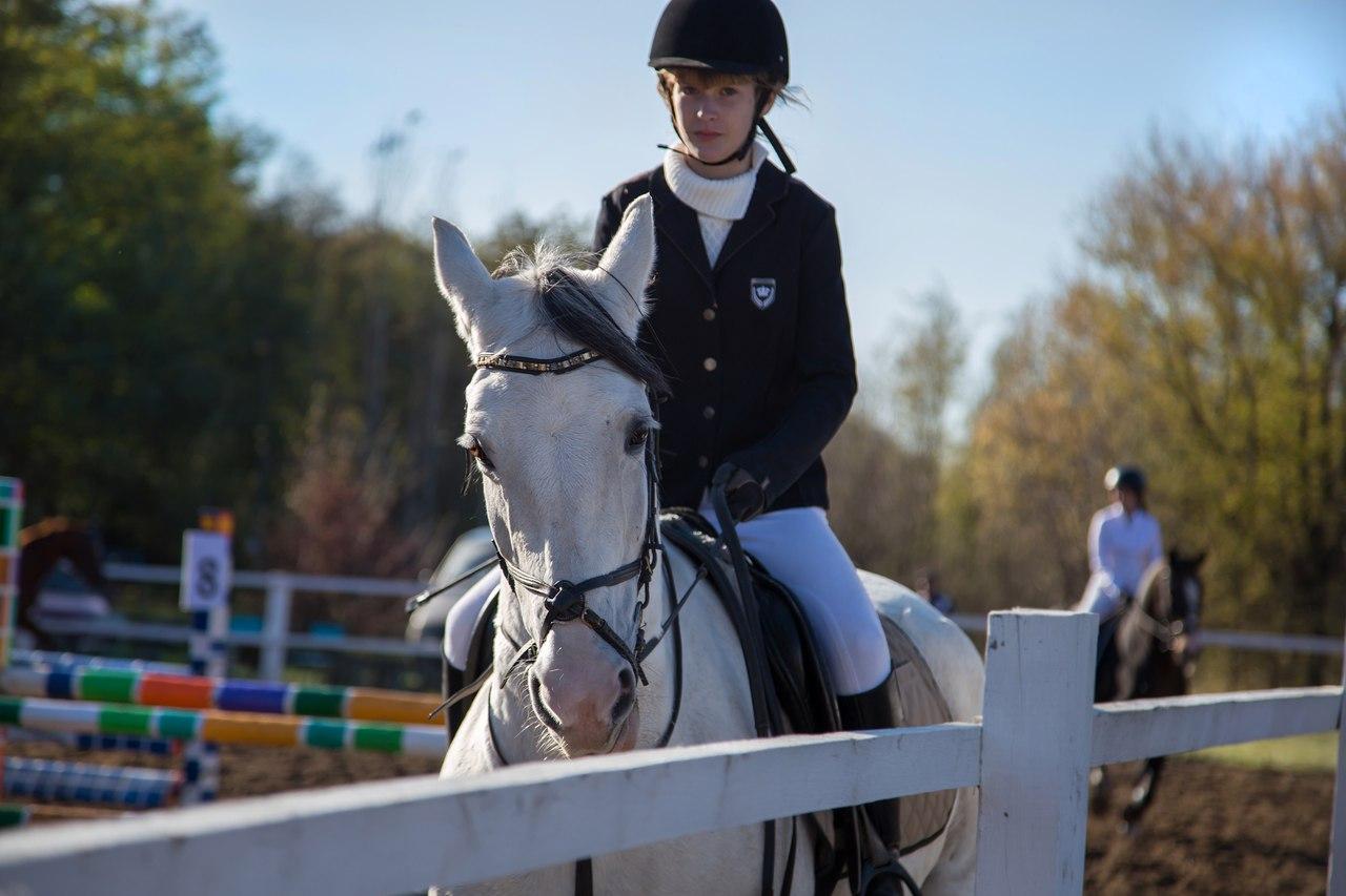 В Таганроге прошло открытое первенство по конному спорту