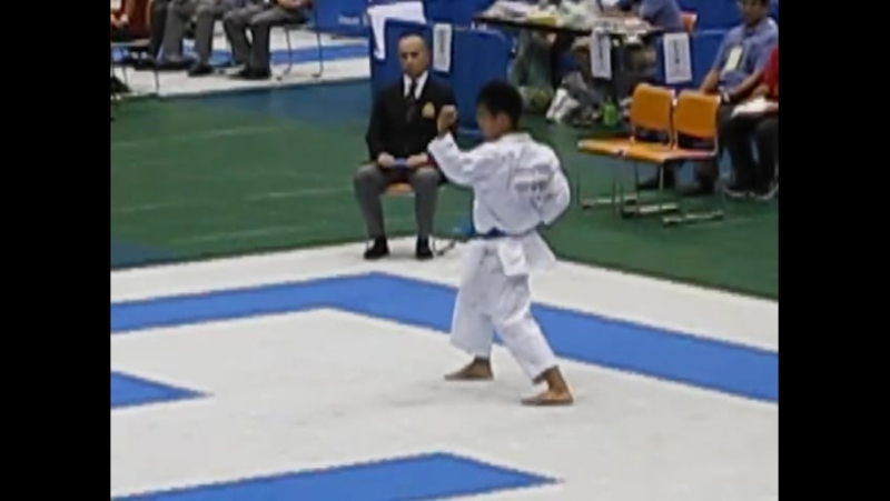 World Cup 2015 1-е место среди мужчин kata wadokai- кushanku