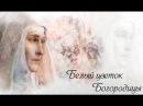 Белый цветок Богородицы