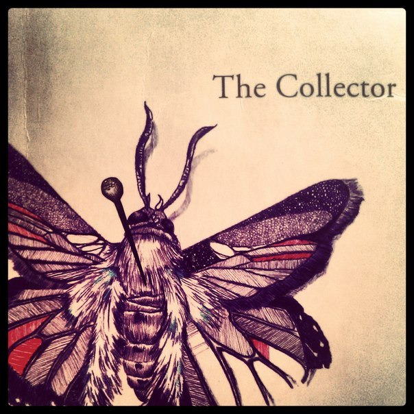 the collector by john fowles essay John fowles the collector plot overview and analysis written by an  experienced literary critic full study guide for this title currently under  development.