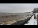 круговушка волжского дикого пляжа