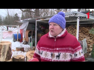 Тульскую область атакуют снежные блохи