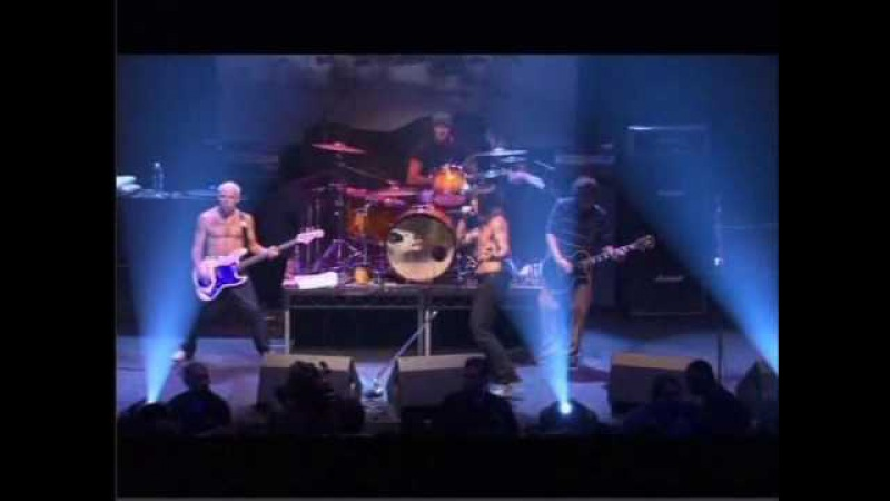 Red Hot Chili Peppers - Ramones Tribute Concert