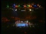 Lennox Lewis vs Glenn McCrory (30-09-1991)