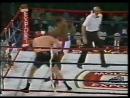 Lennox Lewis vs Greg Gorrell (18-12-1989)