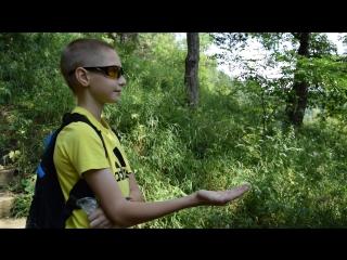 Неожиданная встреча в Кисловодском парке