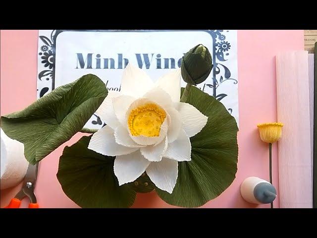 Lotus paper flower Hướng dẫn làm hoa sen giấy nhún