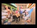 Орёл и Решка - 8.2 Выпуск (На краю света. Эфиопия. Аддис-Абеба)