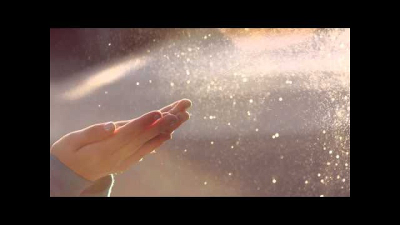 (Видео-Гармонизатор) Истинная Любовь в моменте Здесь и Сейчас