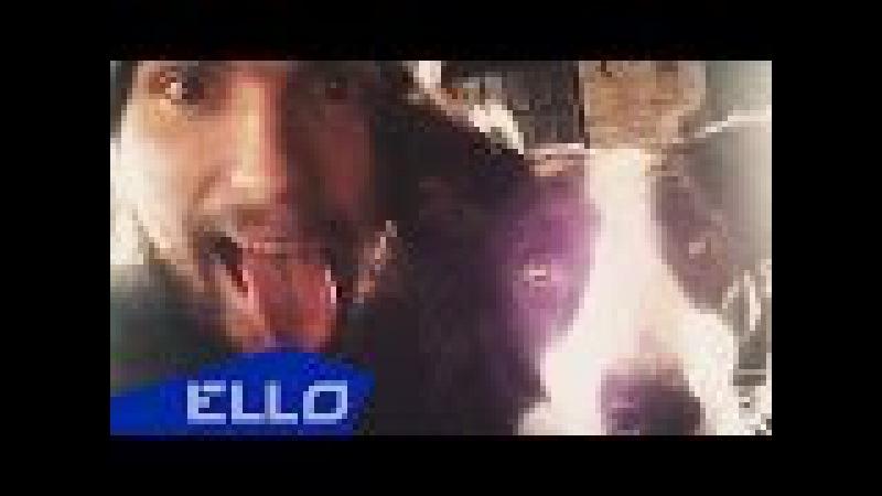 Noize MC - Порвав поводок (OST «Ёлки лохматые»)
