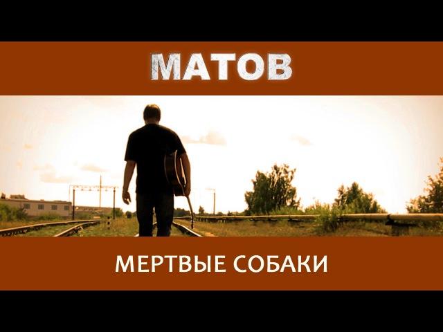 Алексей Матов Мертвые собаки