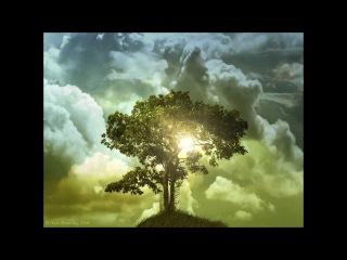 Элени Караи́ндру (Греция) - Танец жизни дерева