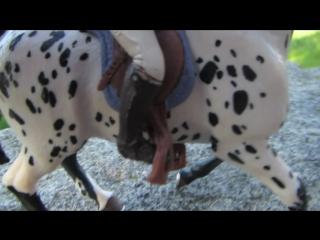 Наше совместное видио с Листиком (кони не мои)