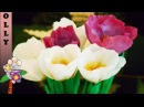 How to make paper flowers : Crocus | paper flowers tutorial | Paper flowers decoration