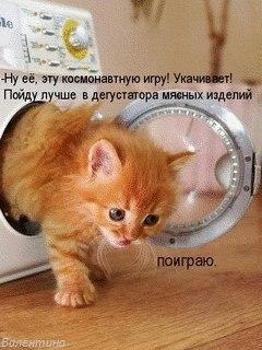 https://pp.vk.me/c628819/v628819601/5012/SCchzrjJDG8.jpg