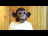 Как сделать маску обезьяны. Конструирование из поролона.