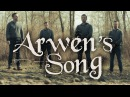 Arwen's Song - Lord of the Rings - Peter Hollens