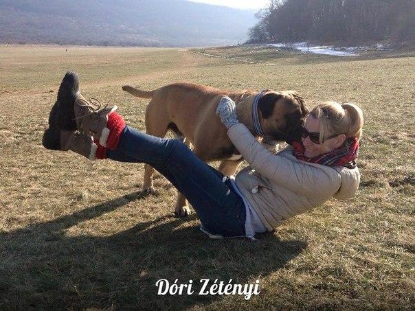 Взаимотношения, общение с собакой 9jI--eK3OYI