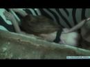 Спалили секс в туалете(студент? ?, прыгает, скачет, наездница, русское любительское домашнее частное порно секс, жопа,минет,инцес т