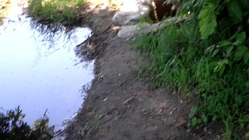 мое укромне местечко на речке в Пгт