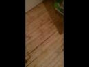 Косметический ремонт кухни с прикольным потолком