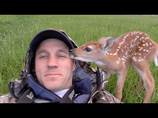 Man Saves Abandoned Baby Deer