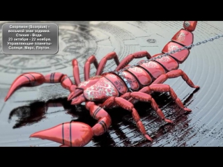 кто под знаком зодиака скорпион