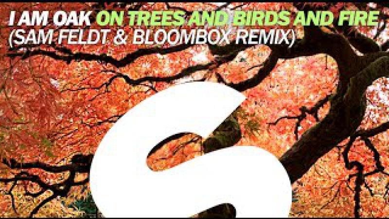 I Am Oak - On Trees and Birds and Fire (Sam Feldt Bloombox Remix)
