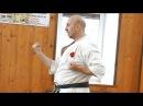 Николай Коровин о понятии «чикара» яп энергия низа живота в технике окинавского каратэ