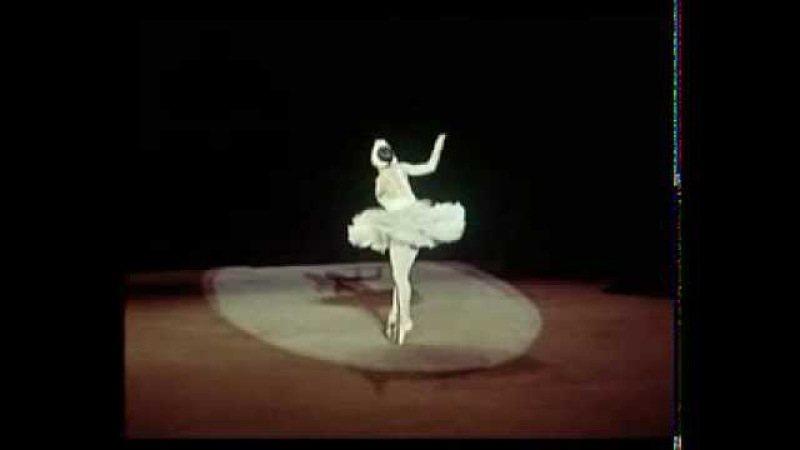 Умирающий лебедь Исполняет Галина Уланова 1956 год