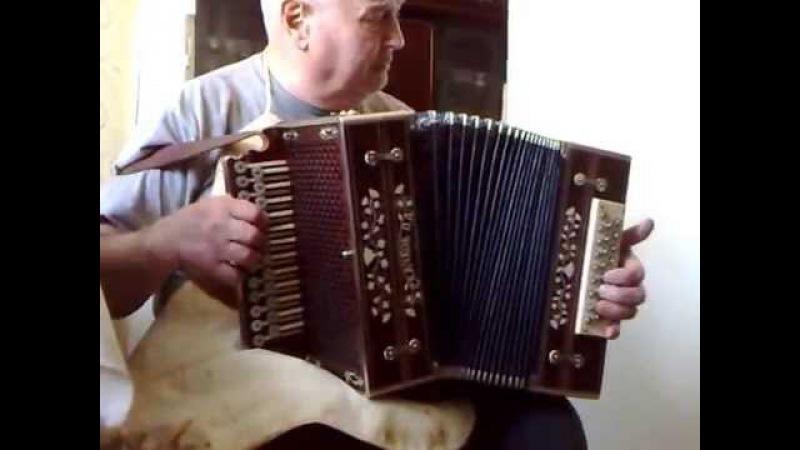старый гармонист