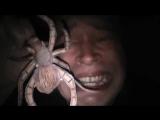 Страшный паук видео прикол про паука  — Сегодня мне было очень страшно находиться ночью в темноте