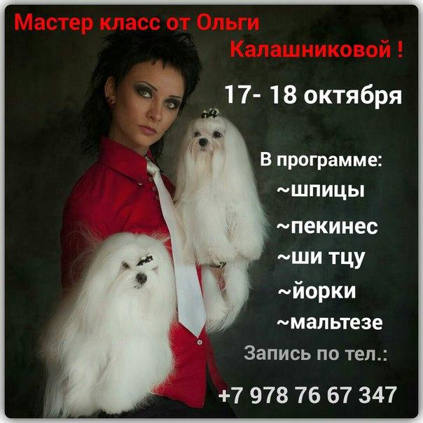 Ольга калашникова мастер класс