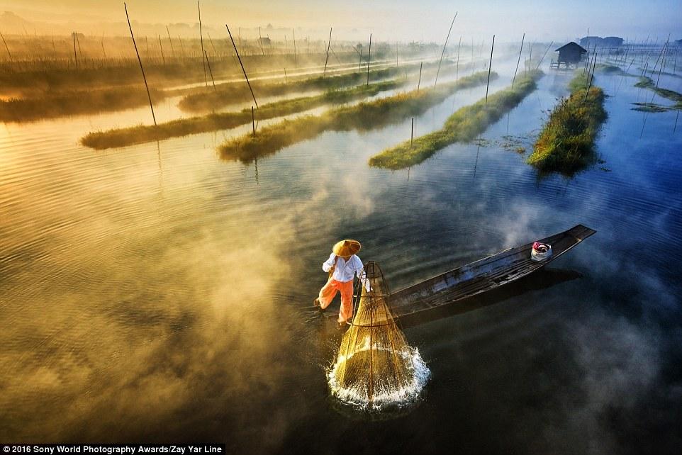 q4CwfVFcF2Y - Лучшие фотографии на премию Sony World Photography Award 2016