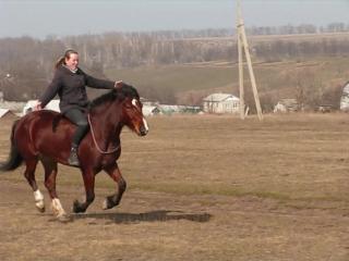 Езда без уздечки и седла (НХ)