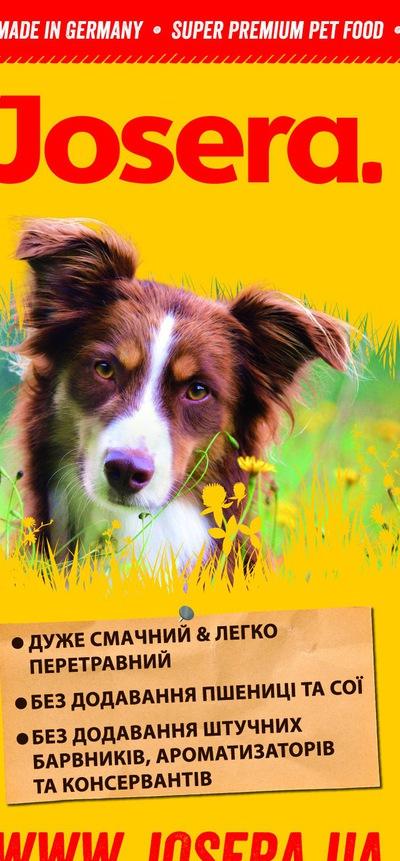 Royal Canin - для кастрированных котов и стерилизованных