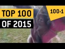 Top 100 Viral Videos 2015 Compilation JukinVideo Best of the Year