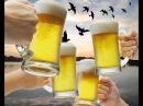 Пей пиво Дискотека Авария Drink beer the Disco Avaria