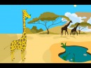 У жирафа пятна пятнышки везде Развивающий мультфильм потешка