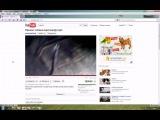 Как сохранить любое видео с интернета