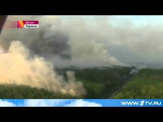 """Природный пожар в зоне """"отчуждения"""" Чернобыльской АЭС разгорается с новой силой"""