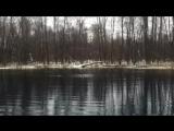 Мой заплывчик 12.11.15 Дикое Большое