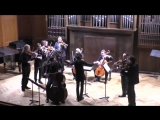 Геза Фрид Elephant Variations для контрабаса и струнных на тему Сен-Санса, соч. 91